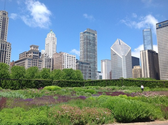 image of a community garden with a large cityscape in the background